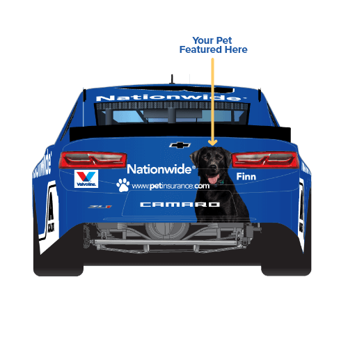 Nationwide - Pet insurance